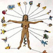 Aztec Zodiac Man, Medical Astrology Poster