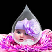 Baby Dewdrop Poster