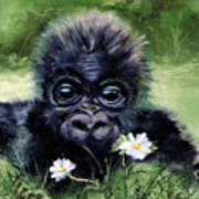 Baby Gorilla With Daisies Poster