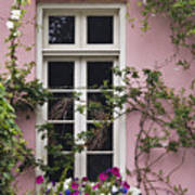 Back Alley Window Box - D001793 Poster