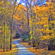 Back Road Fall Foliage Poster