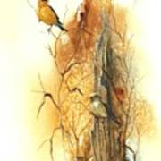 Backyard American Goldfinch Poster