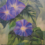 Backyard Morning Glories Poster