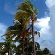 Bahamian Breeze Poster