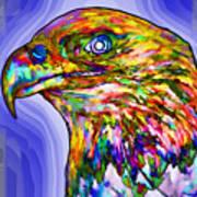 Bald Eagle Face Poster