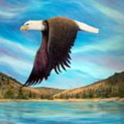 Bald Eagle Shuswap Rhapsody Poster