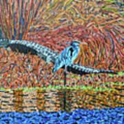 Bald Head Island, Gator, Blue Heron Poster