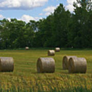 Bales In The Field Poster
