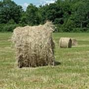 Bales Of Hay In New England Field Poster