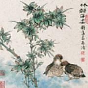 Bamboo And Chicken Poster