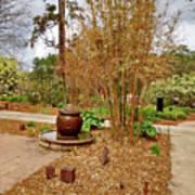 Bamboo At The Botanical Gardens Poster