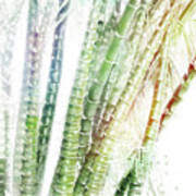Bamboo Forest Watercolor Poster