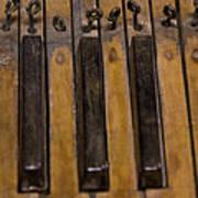 Bamboo Organ Keys Poster