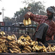 Banana Man On Cart In India Poster
