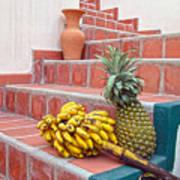 Bananas And Pineapple On Terracotta Steps Poster