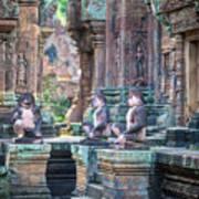 Banteay Srey Temple Pink Monkeys Poster