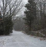 Bare Cove Park In A Snowstorm Poster