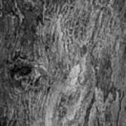 Bark At The Moon Poster