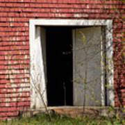 Barn Door And Cedar Poster