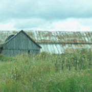 Barn In Softness Of Nature Poster
