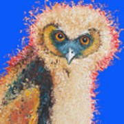 Barn Owl Painting Poster