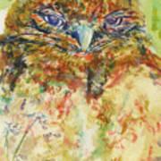 Barn Owl Thinking Poster