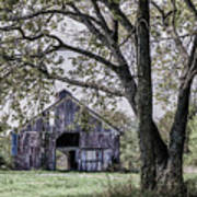 Barn Underneath The Tree Poster
