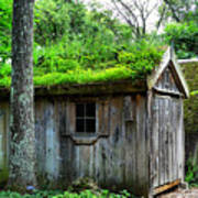 Barn With Green Roof Poster
