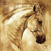 Baroque Horse Series IIi-iii Poster