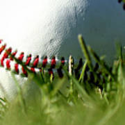 Baseball In Grass Poster