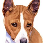 Basenji Sweetness Watercolor Poster