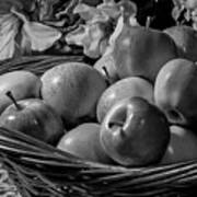 Basket Of Apples Bw Poster
