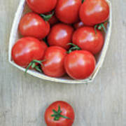 Basket Of Fresh Red Tomatoes Poster