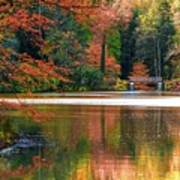 Pond In Autumn Poster