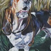 Basset Hound In Wheat Poster