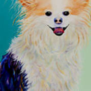 Baxter Poster