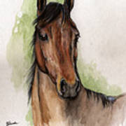 Bay Horse Portrait Watercolor Painting 02 2013 Poster