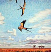 Bayou Ballet Poster