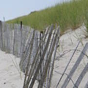 Beach Border Poster by Patricia M Shanahan
