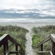 Beach Path Poster