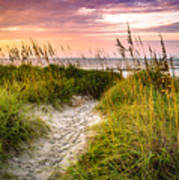 Beach Path Sunrise Poster