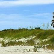 Beach Solitude Poster