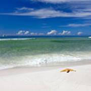 Beach Splendour Poster by Janet Fikar