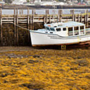 Beached Boat During Low Tide In Nova Scotia Canada Poster