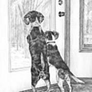 Beagle-eyed - Beagle Dog Art Print Poster