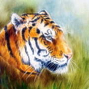 Beautiful Airbrush Painting Of A Mighty Fierce Tiger Head On A Soft Toned Abstract Gres Background  Poster