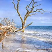 Beautiful Botany Bay Beach  Poster