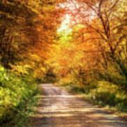 Beautiful Fall Day Poster