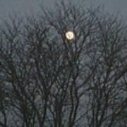 Beautiful Moon Poster