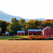 Beautiful Red Barn 4 Poster